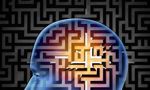 Brain Pathway