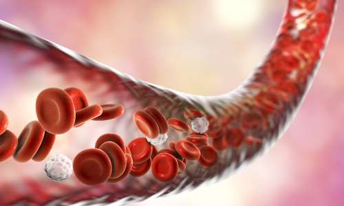 Cancer and blood vessels